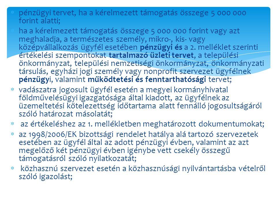 pénzügyi tervet, ha a kérelmezett támogatás összege 5 000 000 forint alatti;
