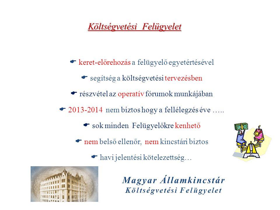 Költségvetési Felügyelet