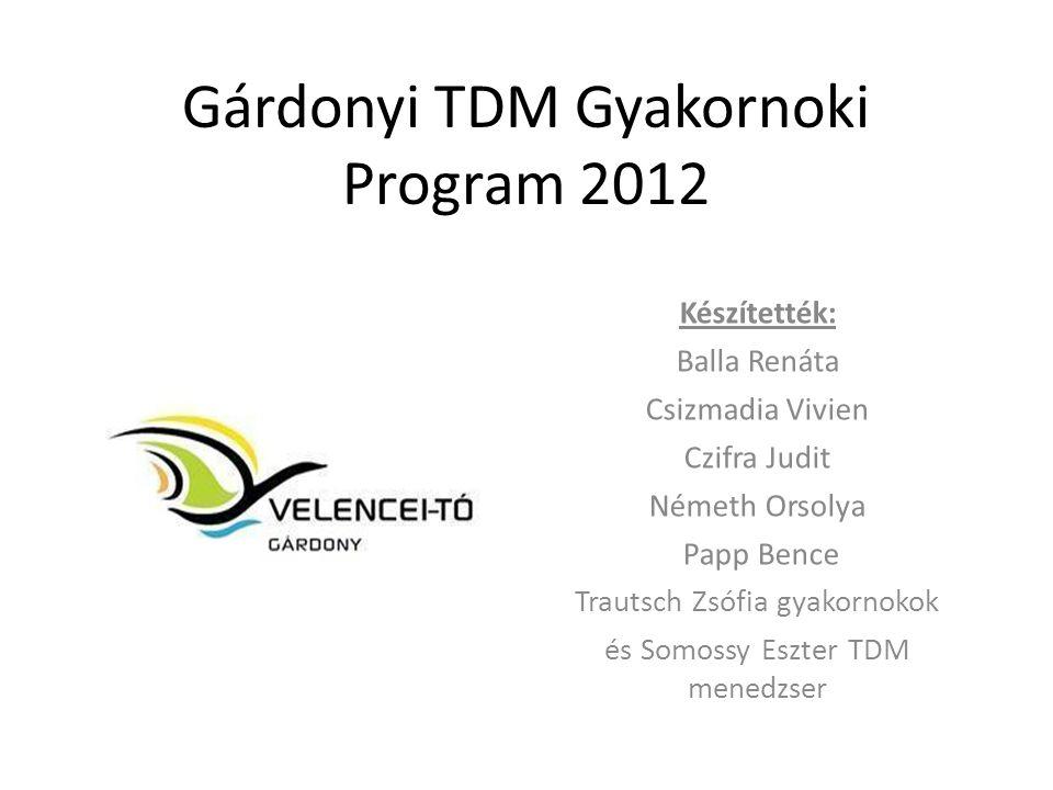 Gárdonyi TDM Gyakornoki Program 2012