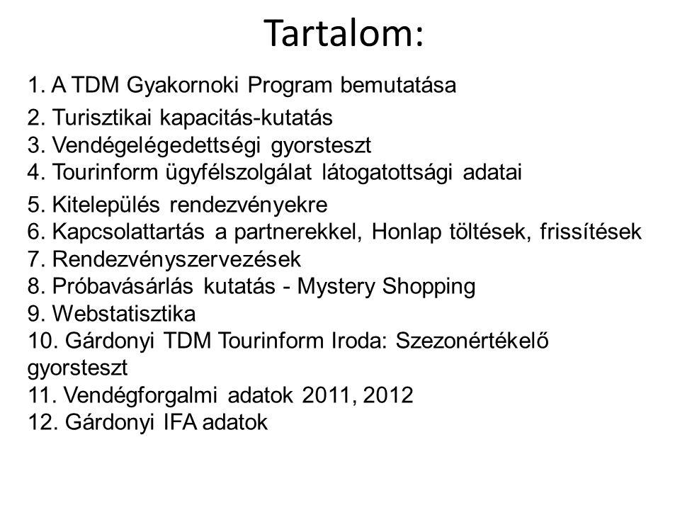 Tartalom: 1. A TDM Gyakornoki Program bemutatása