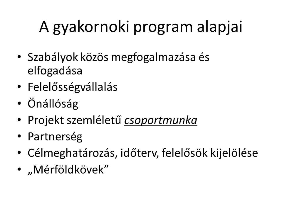A gyakornoki program alapjai