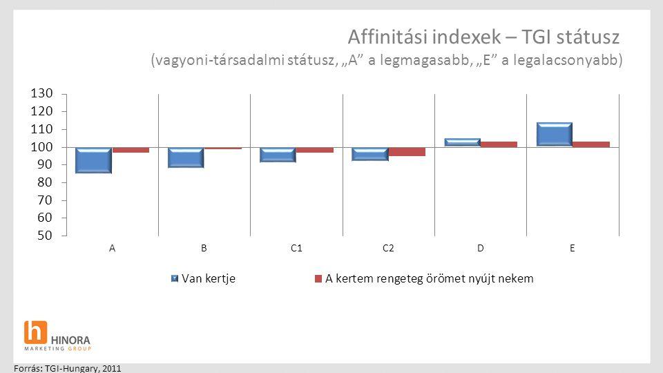 """Affinitási indexek – TGI státusz (vagyoni-társadalmi státusz, """"A a legmagasabb, """"E a legalacsonyabb)"""
