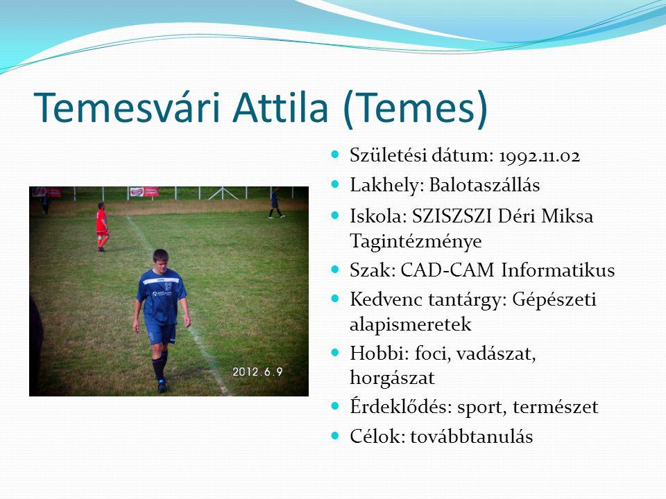 Temesvári Attila (Temes)