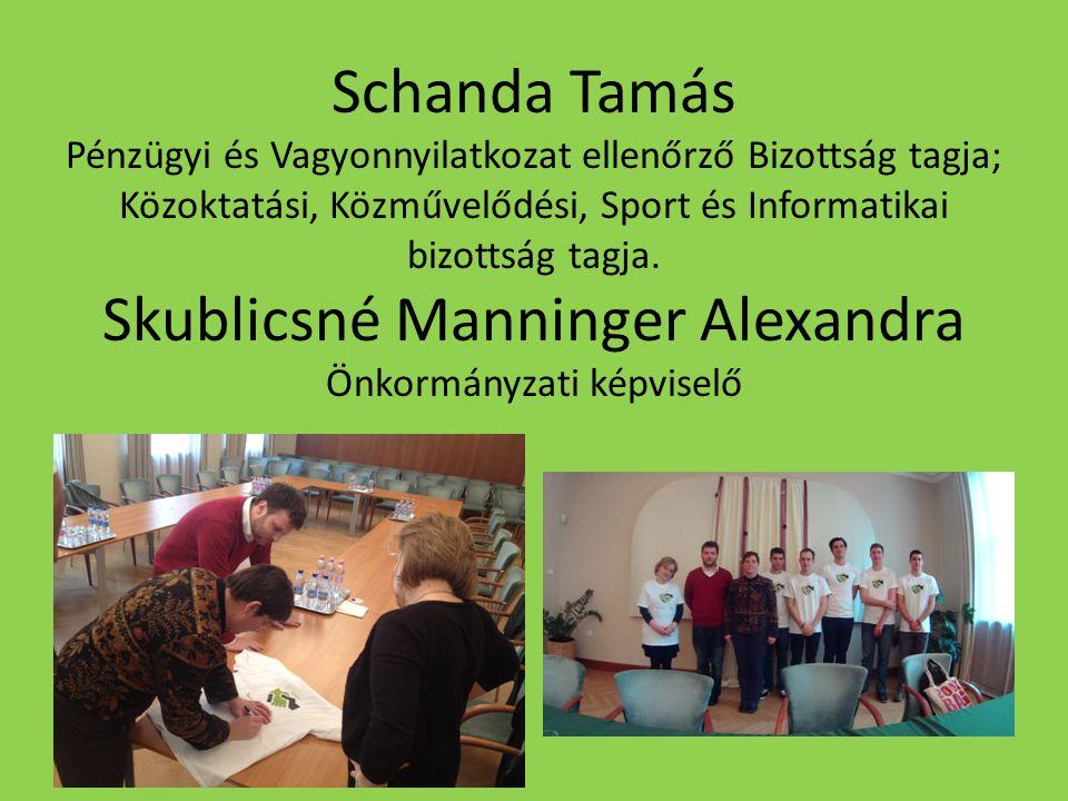 Schanda Tamás Pénzügyi és Vagyonnyilatkozat ellenőrző Bizottság tagja; Közoktatási, Közművelődési, Sport és Informatikai bizottság tagja.