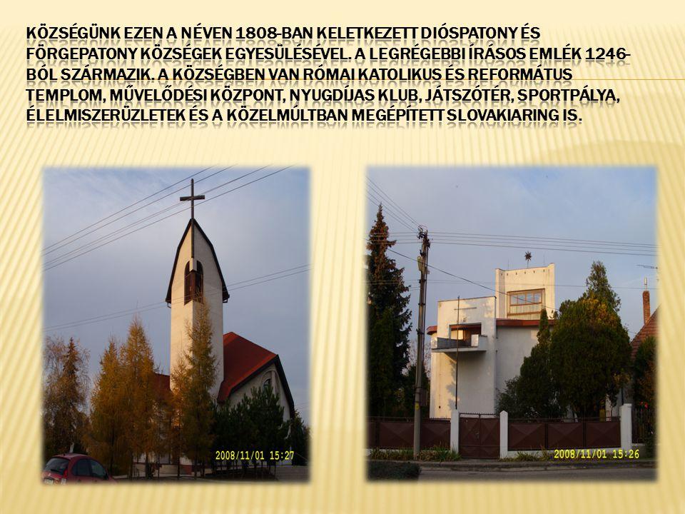 Községünk ezen a néven 1808-ban keletkezett Dióspatony és Förgepatony községek egyesülésével.
