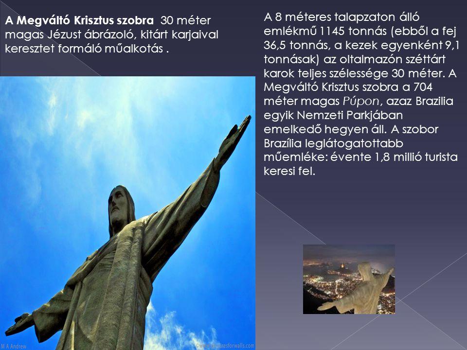 A 8 méteres talapzaton álló emlékmű 1145 tonnás (ebből a fej 36,5 tonnás, a kezek egyenként 9,1 tonnásak) az oltalmazón széttárt karok teljes szélessége 30 méter. A Megváltó Krisztus szobra a 704 méter magas Púpon, azaz Brazilia egyik Nemzeti Parkjában emelkedő hegyen áll. A szobor Brazília leglátogatottabb műemléke: évente 1,8 millió turista keresi fel.
