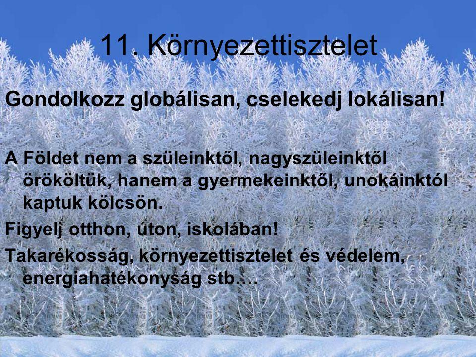 11. Környezettisztelet Gondolkozz globálisan, cselekedj lokálisan!