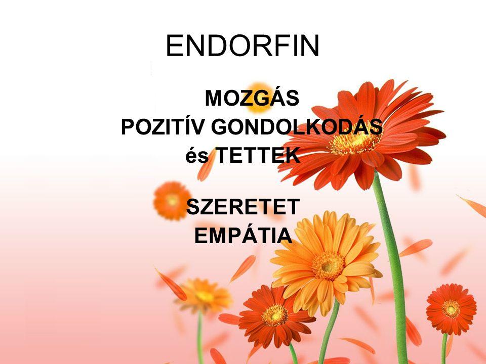 ENDORFIN MOZGÁS POZITÍV GONDOLKODÁS és TETTEK SZERETET EMPÁTIA