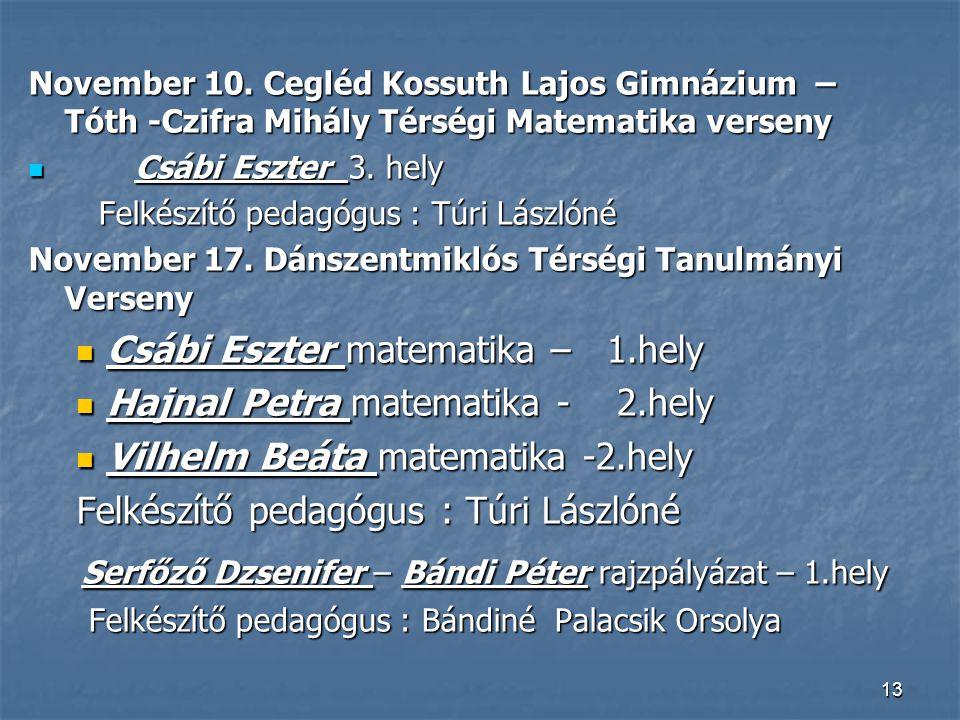 Serfőző Dzsenifer – Bándi Péter rajzpályázat – 1.hely