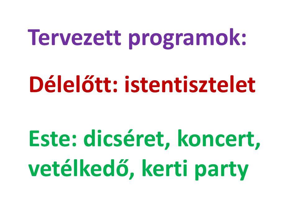 Tervezett programok: Délelőtt: istentisztelet Este: dicséret, koncert, vetélkedő, kerti party