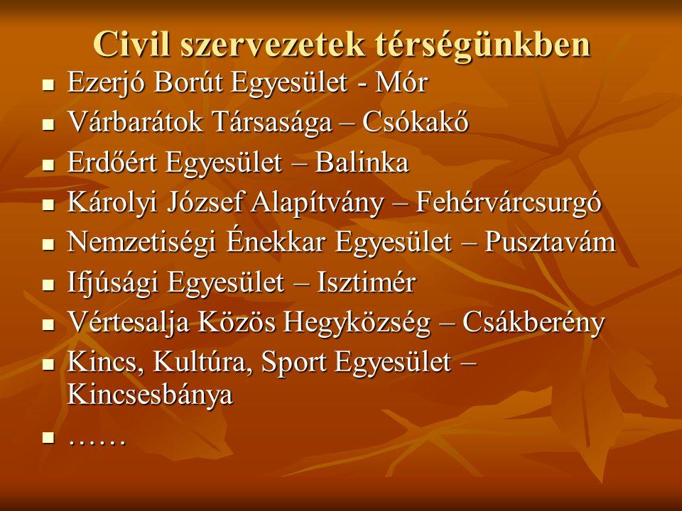 Civil szervezetek térségünkben