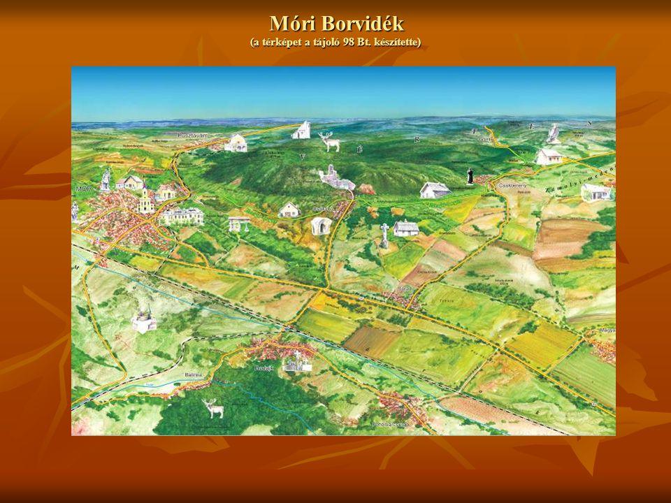 Móri Borvidék (a térképet a tájoló 98 Bt. készítette)