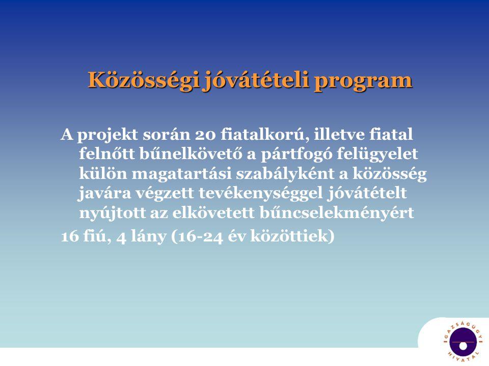 Közösségi jóvátételi program