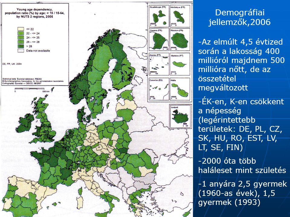 Demográfiai jellemzők,2006