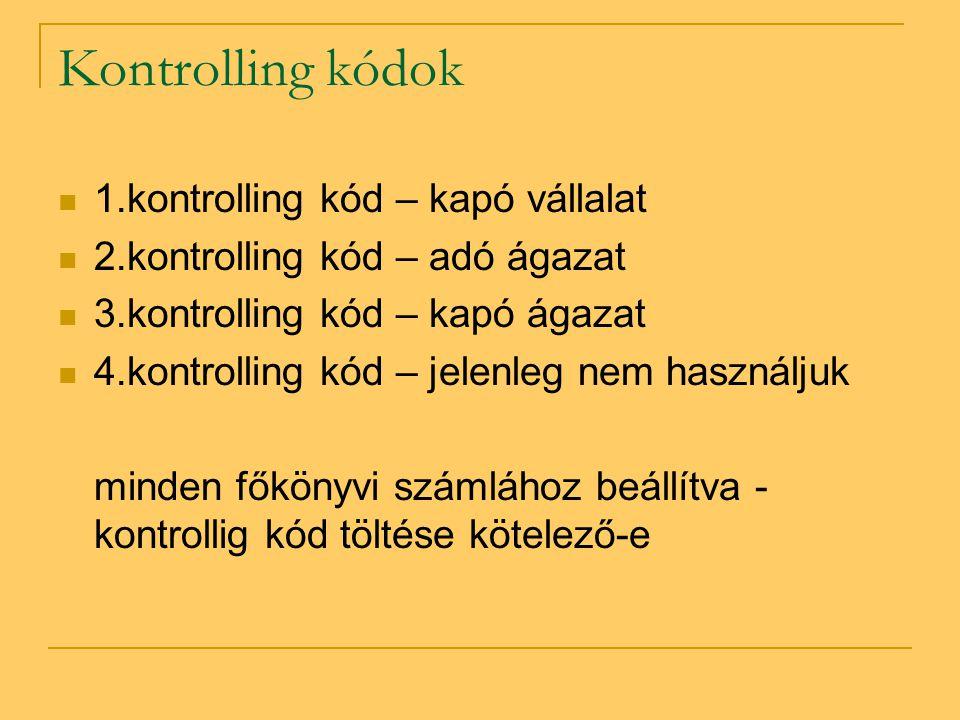Kontrolling kódok 1.kontrolling kód – kapó vállalat