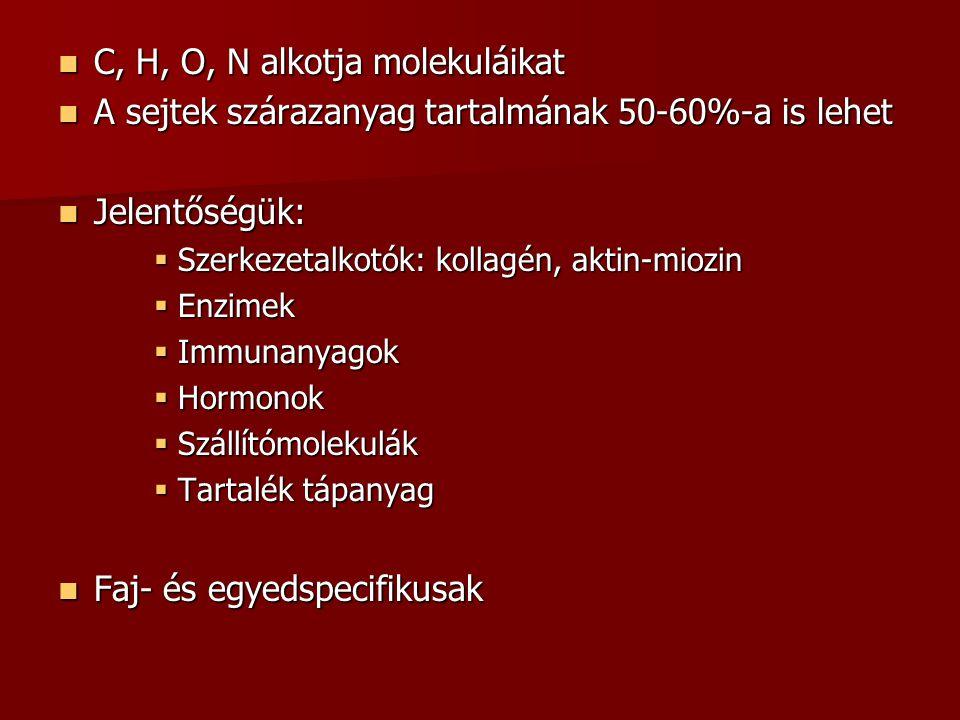 C, H, O, N alkotja molekuláikat