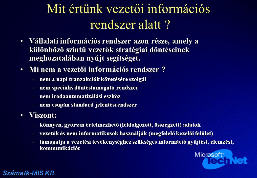 Mit értünk vezetői információs rendszer alatt
