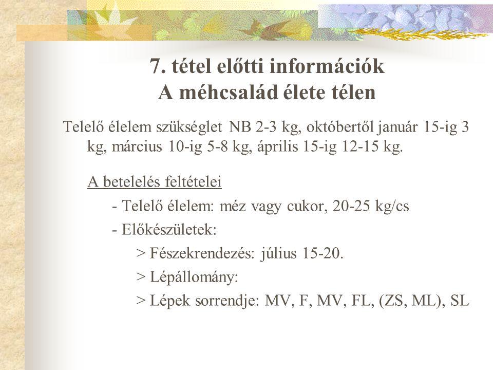 7. tétel előtti információk A méhcsalád élete télen