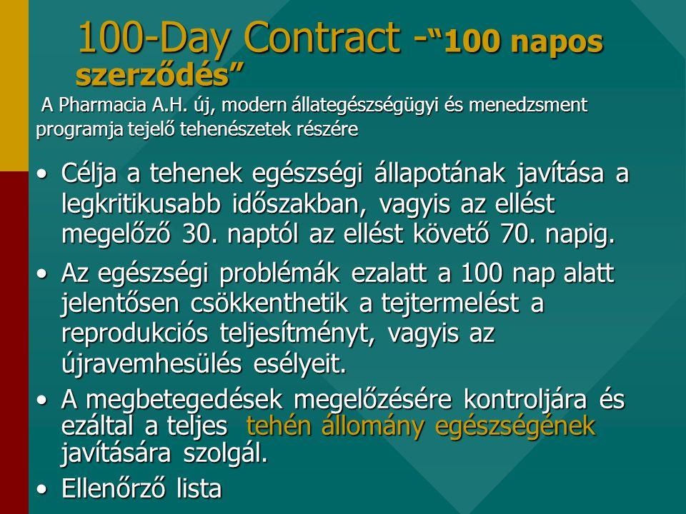 100-Day Contract - 100 napos szerződés