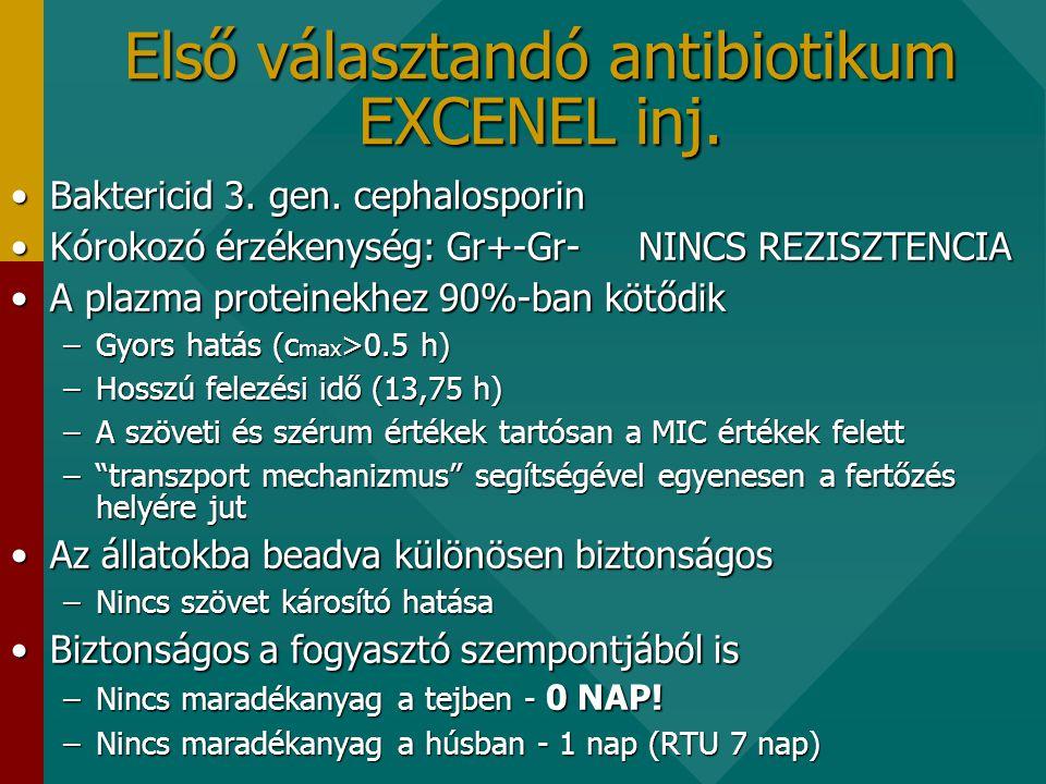 Első választandó antibiotikum EXCENEL inj.