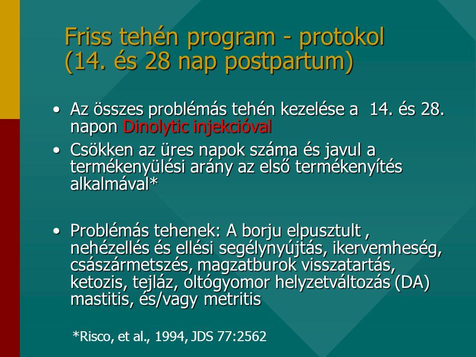Friss tehén program - protokol (14. és 28 nap postpartum)
