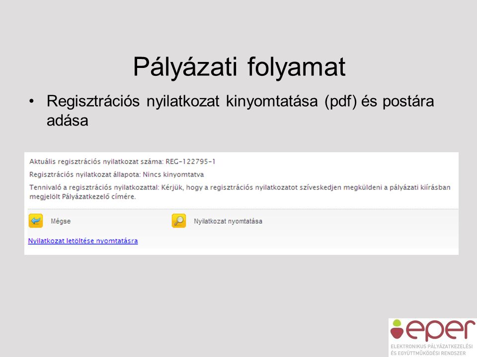 Pályázati folyamat Regisztrációs nyilatkozat kinyomtatása (pdf) és postára adása