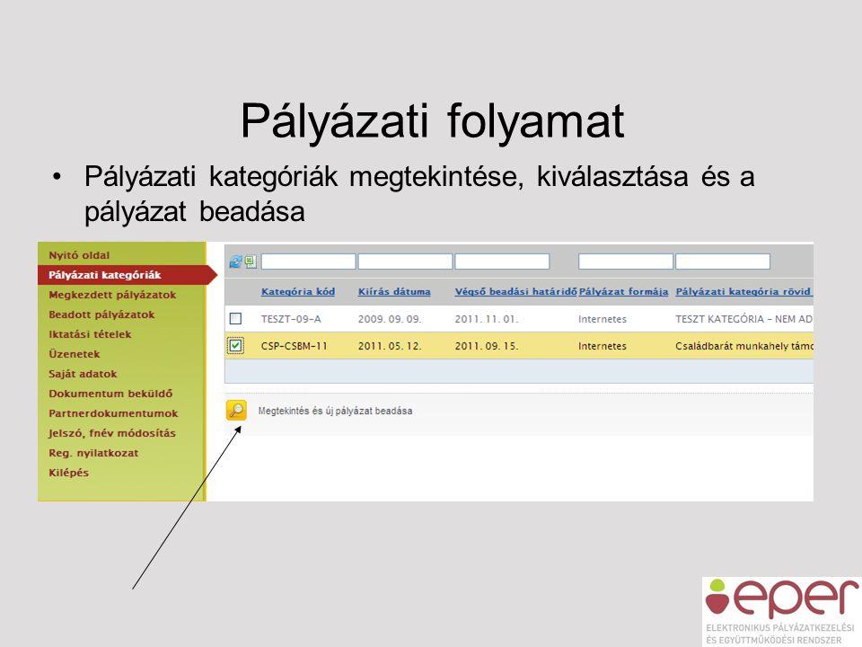 Pályázati folyamat Pályázati kategóriák megtekintése, kiválasztása és a pályázat beadása