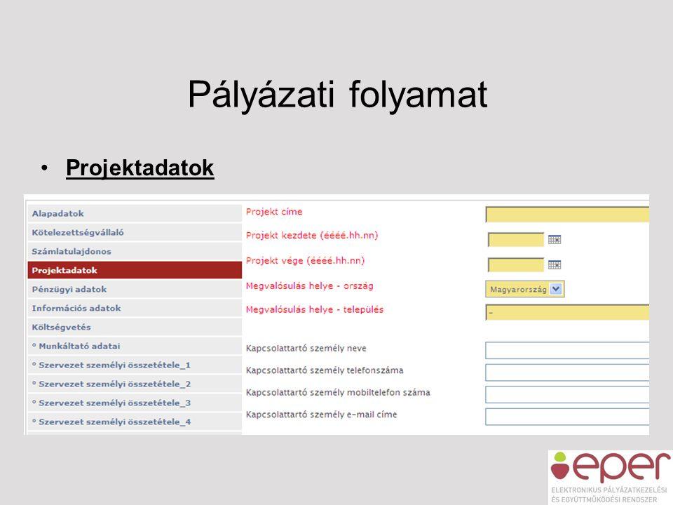Pályázati folyamat Projektadatok