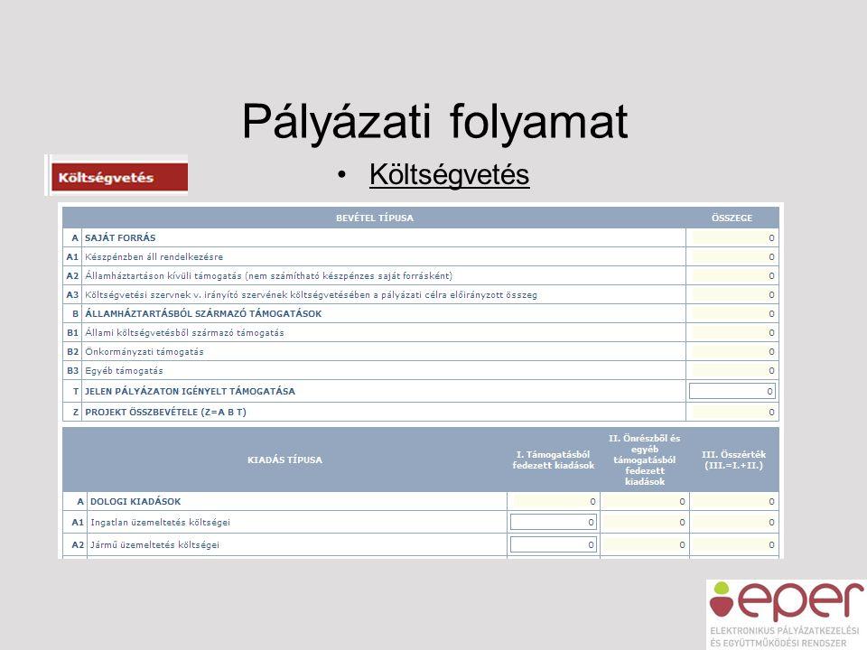 Pályázati folyamat Költségvetés