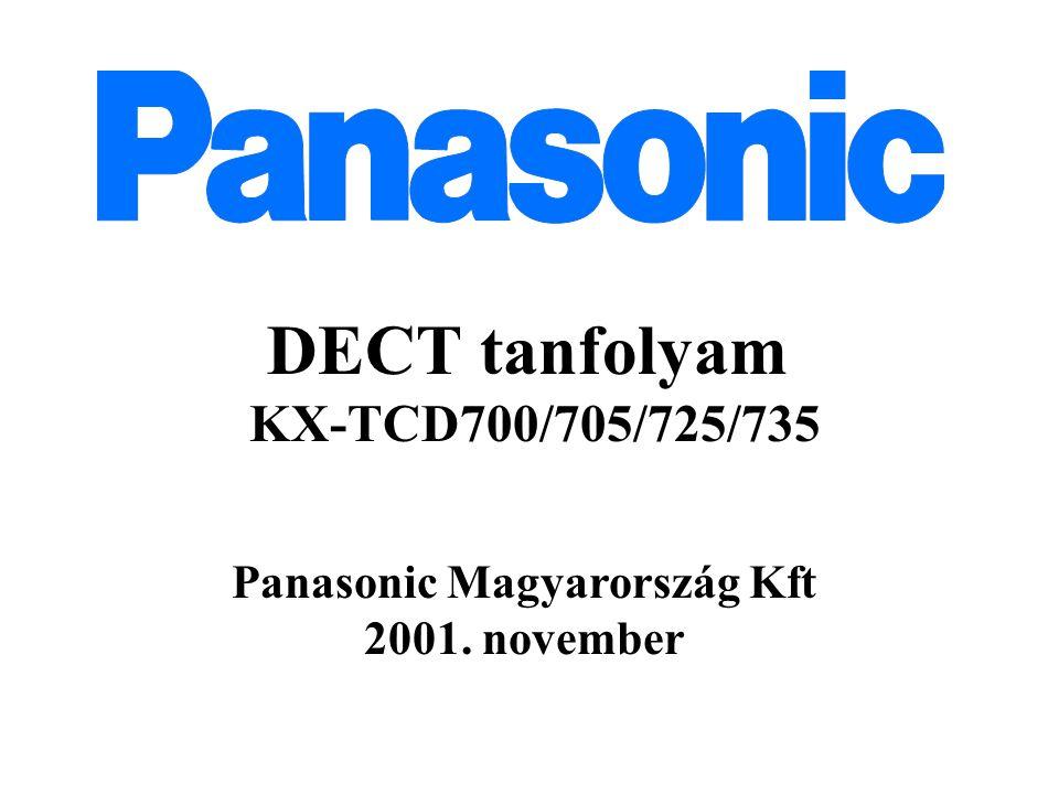 Panasonic Magyarország Kft