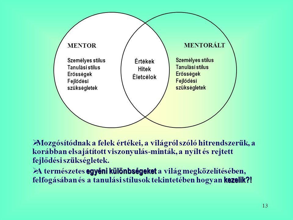 MENTOR Személyes stílus. Tanulási stílus. Erősségek. Fejlődési szükségletek. MENTORÁLT. Értékek.