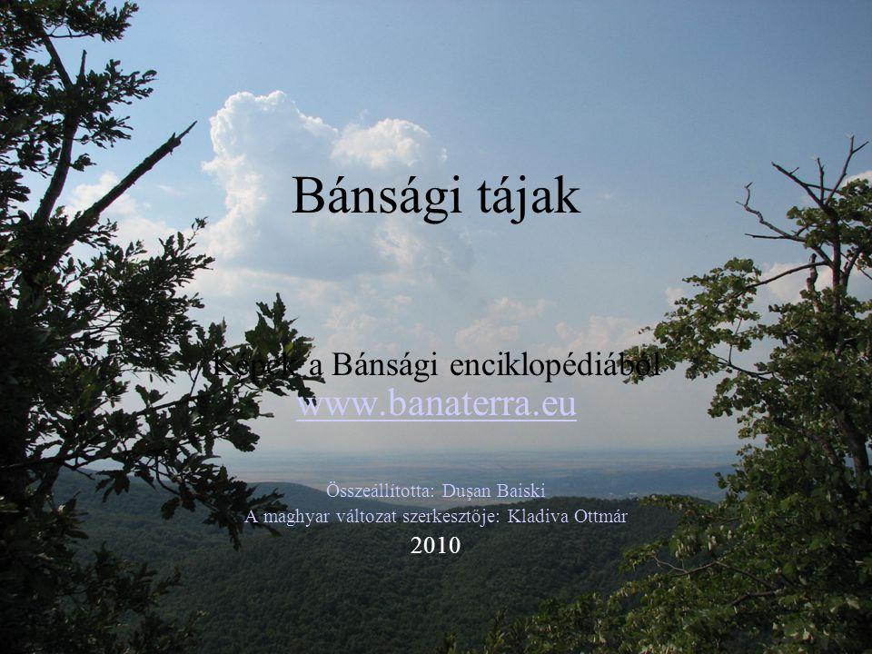 Bánsági tájak Képek a Bánsági enciklopédiából www.banaterra.eu 2010