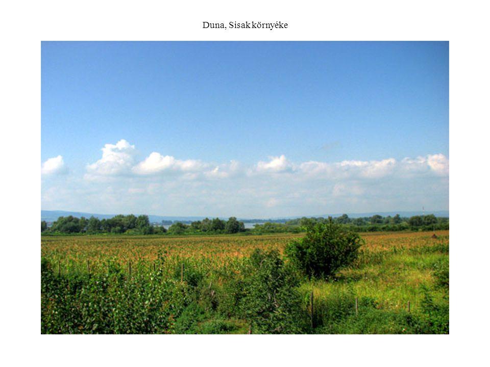 Duna, Sisak környéke