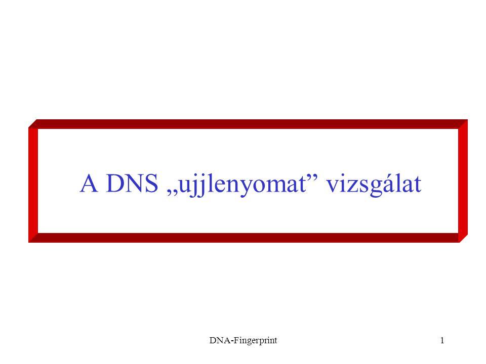 """A DNS """"ujjlenyomat vizsgálat"""