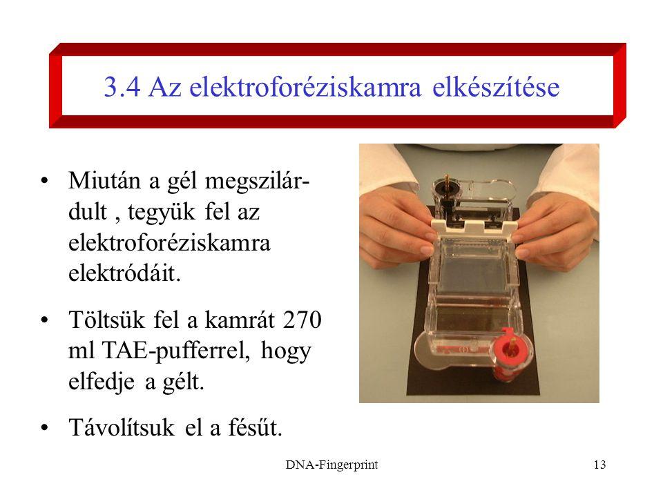 3.4 Az elektroforéziskamra elkészítése
