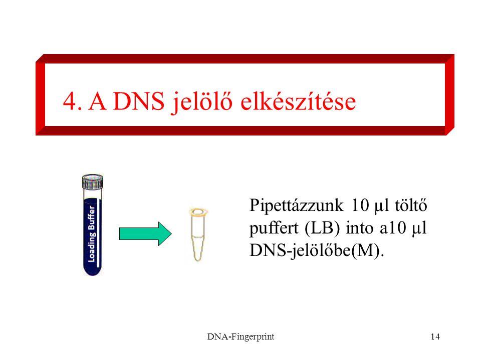 4. A DNS jelölő elkészítése