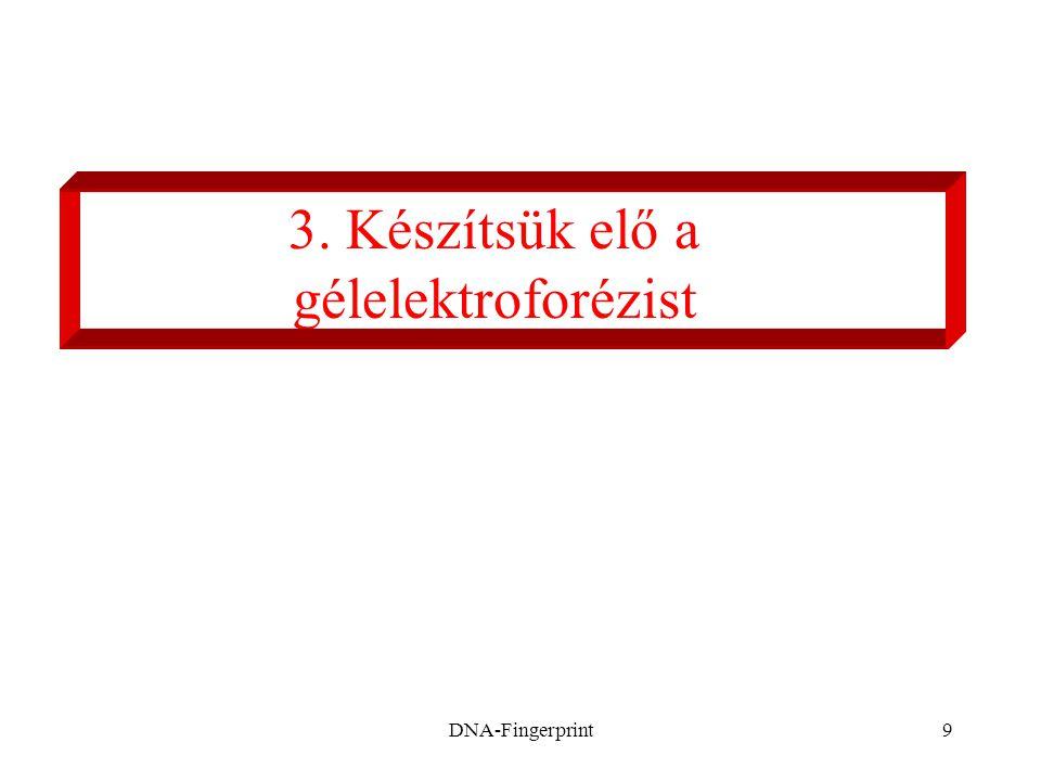 3. Készítsük elő a gélelektroforézist