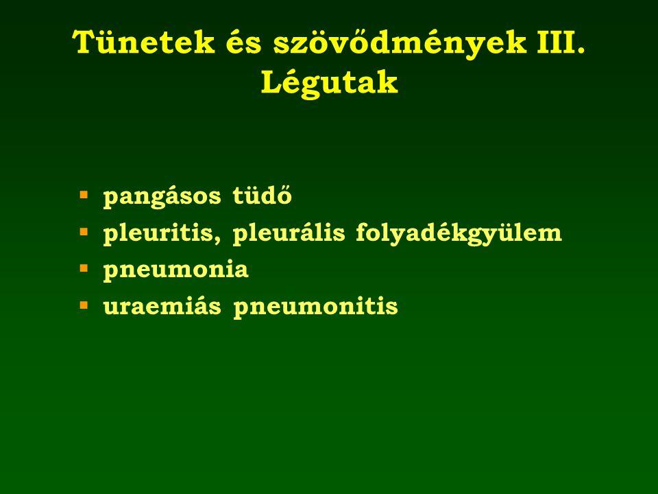 Tünetek és szövődmények III. Légutak