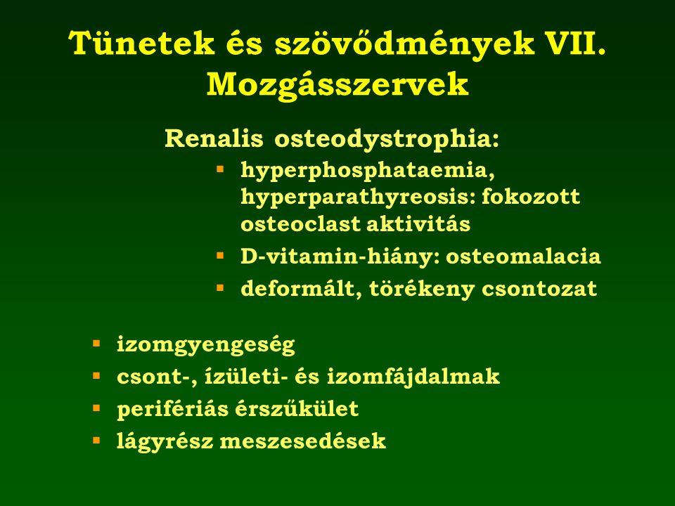 Tünetek és szövődmények VII. Mozgásszervek