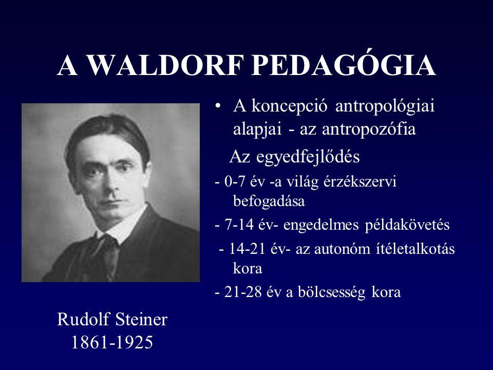 A WALDORF PEDAGÓGIA A koncepció antropológiai alapjai - az antropozófia. Az egyedfejlődés. - 0-7 év -a világ érzékszervi befogadása.