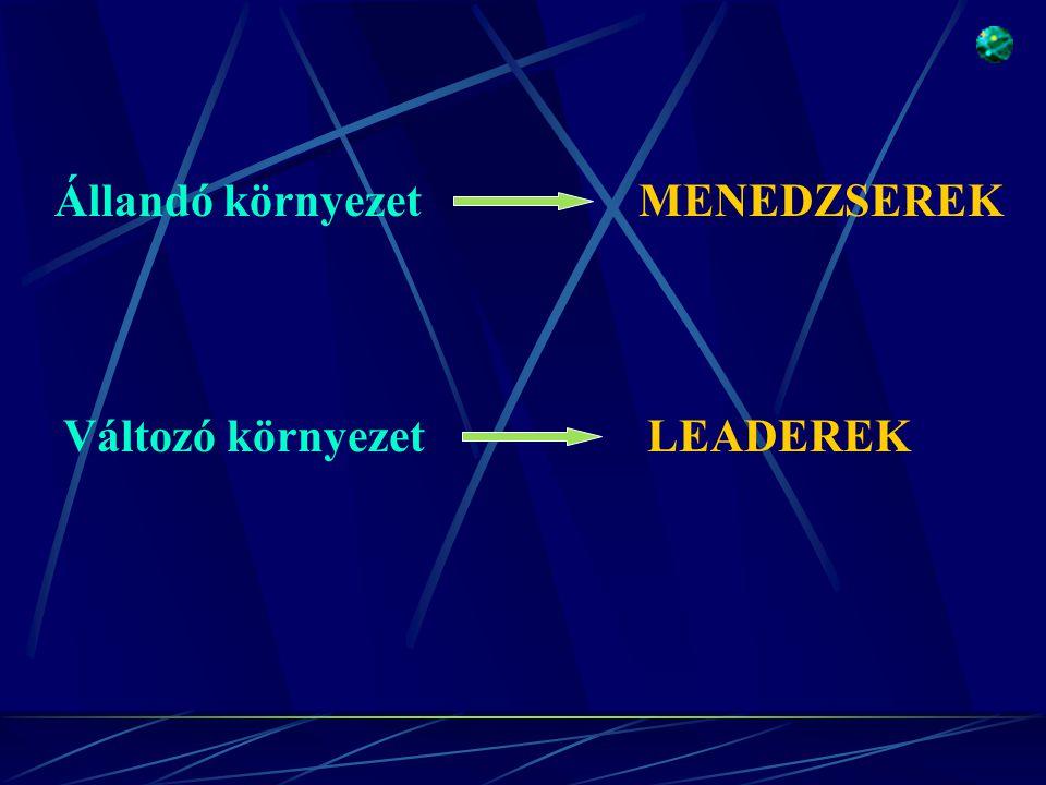 Állandó környezet MENEDZSEREK Változó környezet LEADEREK