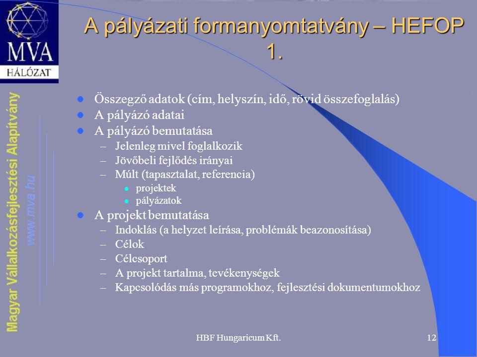 A pályázati formanyomtatvány – HEFOP 1.