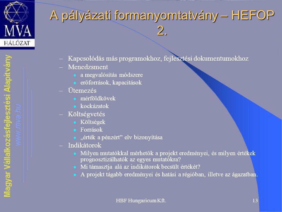 A pályázati formanyomtatvány – HEFOP 2.