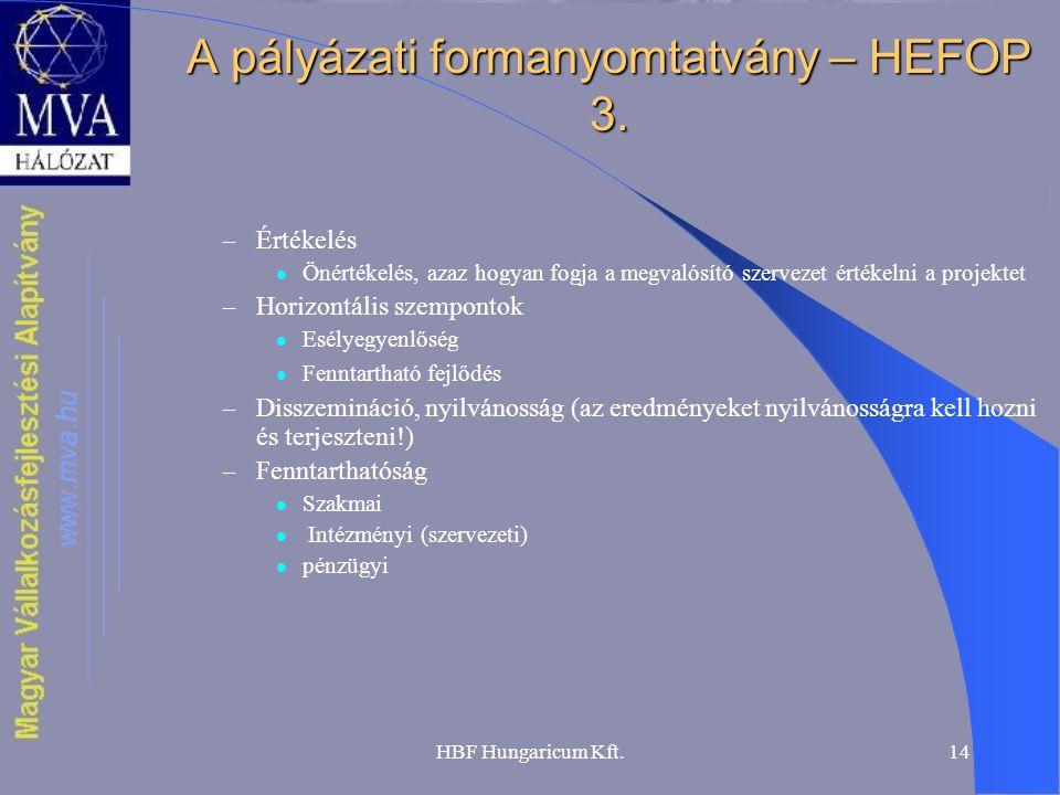 A pályázati formanyomtatvány – HEFOP 3.