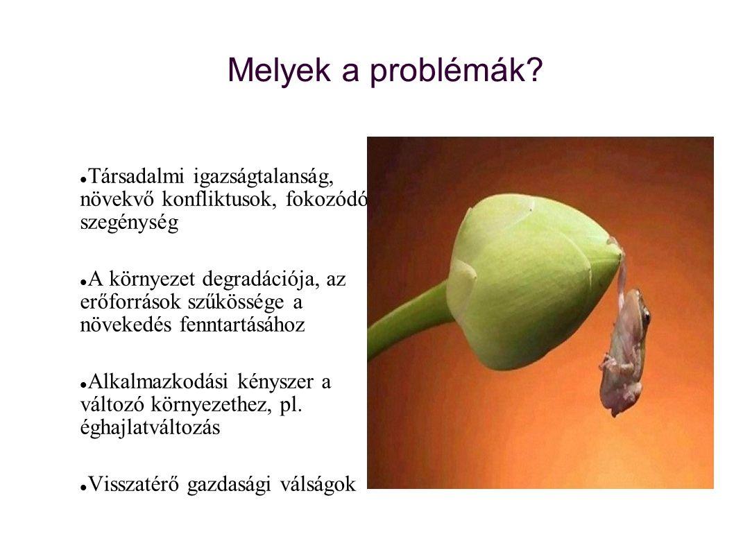 Melyek a problémák Társadalmi igazságtalanság, növekvő konfliktusok, fokozódó szegénység.