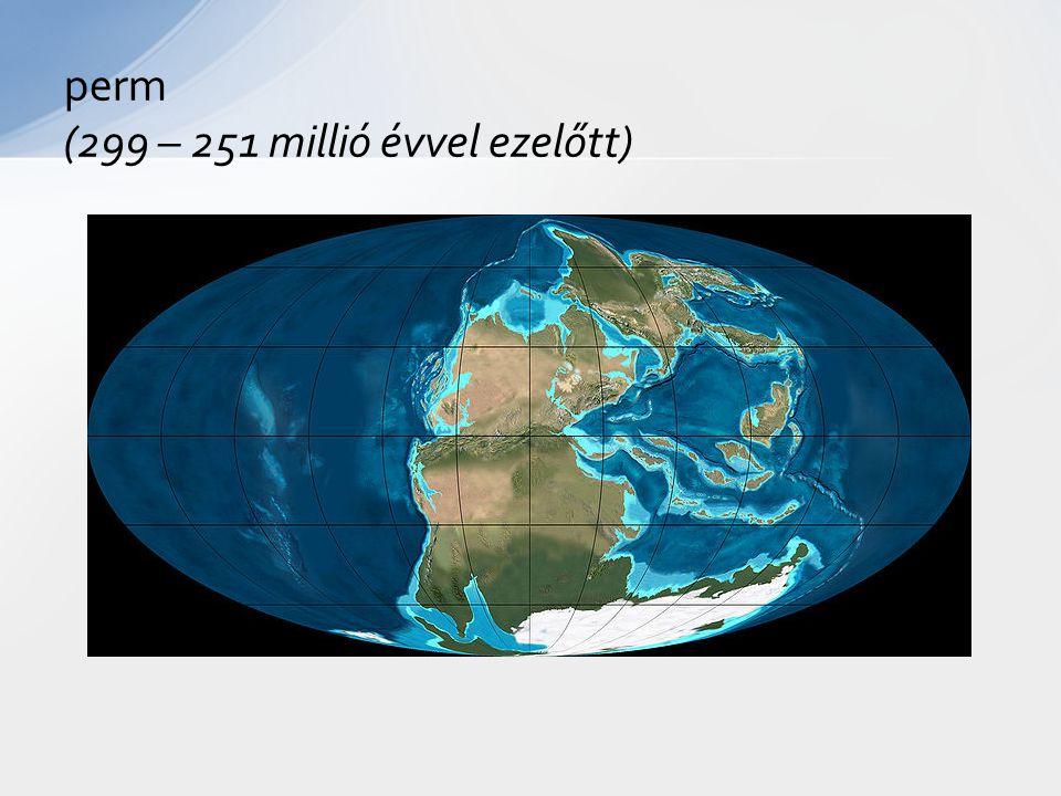 perm (299 – 251 millió évvel ezelőtt)