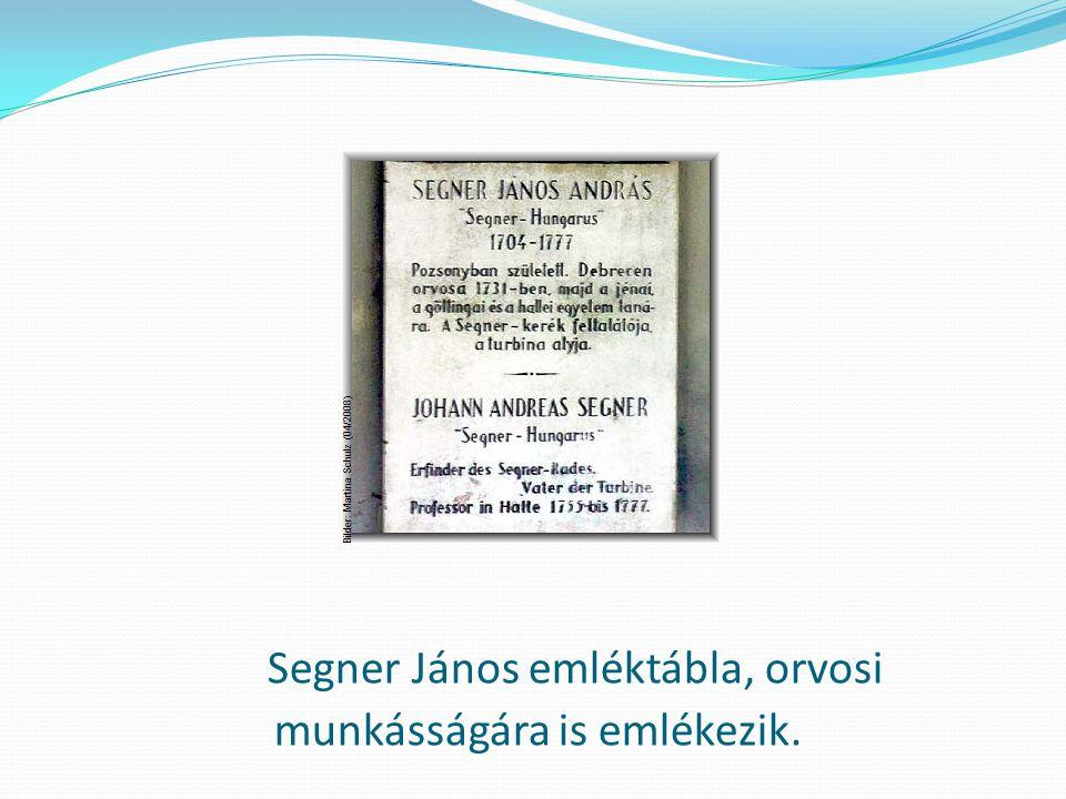 Segner János emléktábla, orvosi munkásságára is emlékezik.