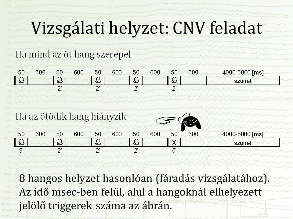Vizsgálati helyzet: CNV feladat