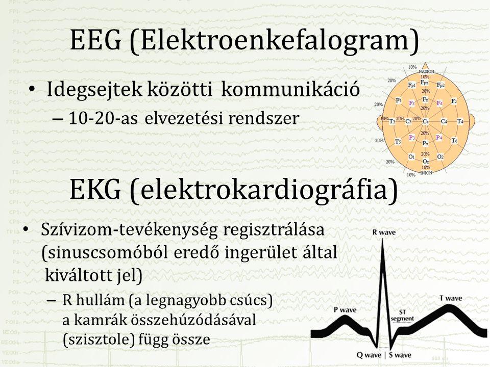 EEG (Elektroenkefalogram)