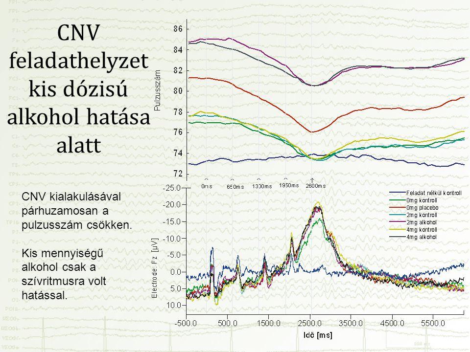 CNV feladathelyzet kis dózisú alkohol hatása alatt